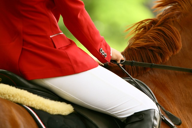 Claiming for Horse Riding Injuries
